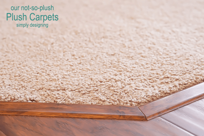 our not-so-plush Plush Carpets