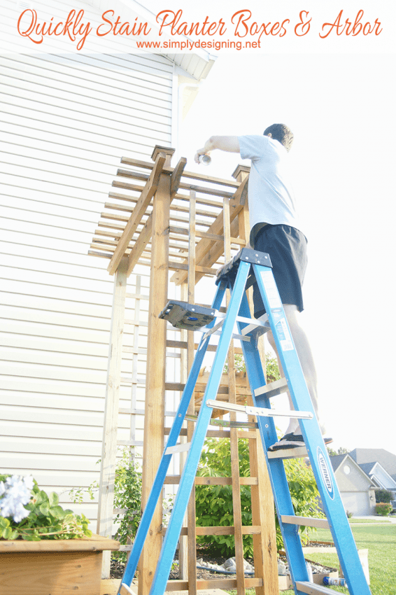 How to Quickly Stain an Arbor in about 15 minutes #stain #staining #diy #exterior