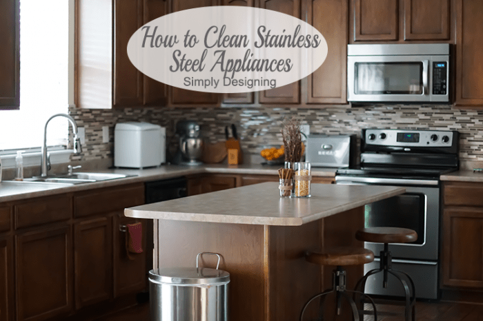 Clean Stainless Steel Kitchen Appliances