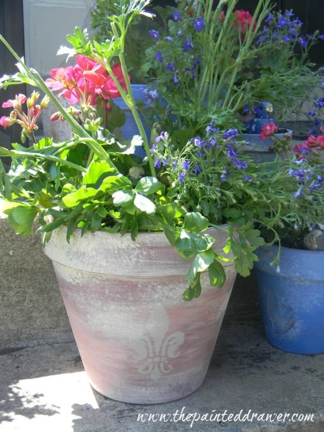 french flower pot