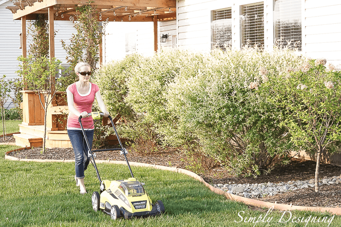 Lawn Mower that will make your life easier and make your neighbors stop and stare