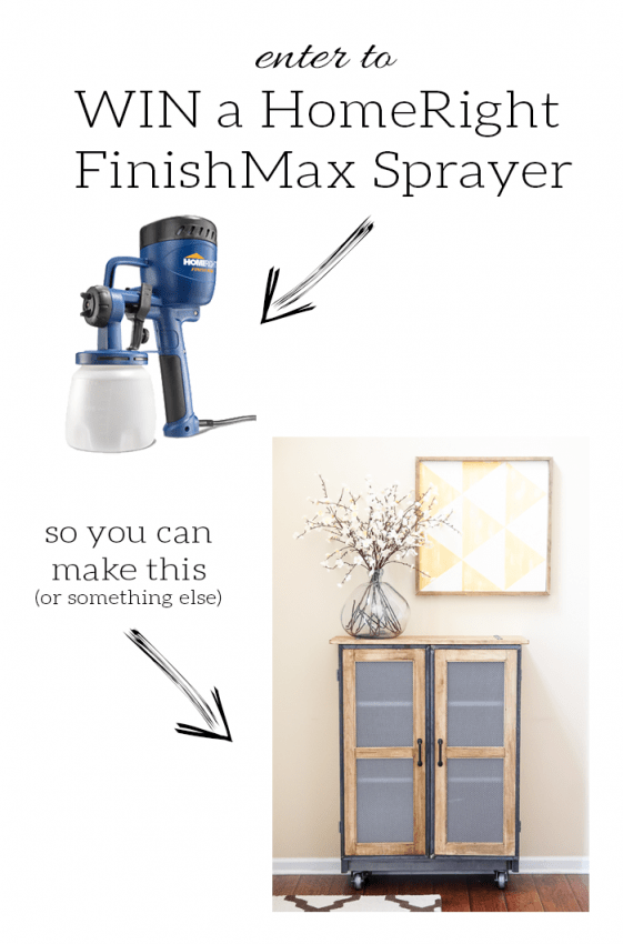 Paint Sprayer Giveaway