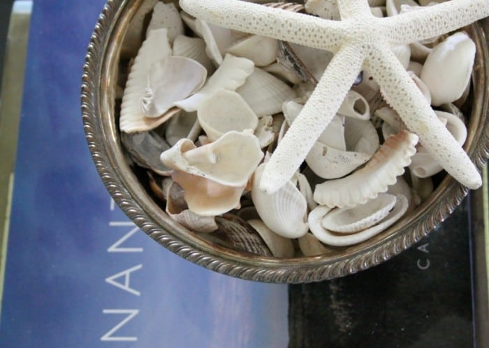 decorating with sea shells
