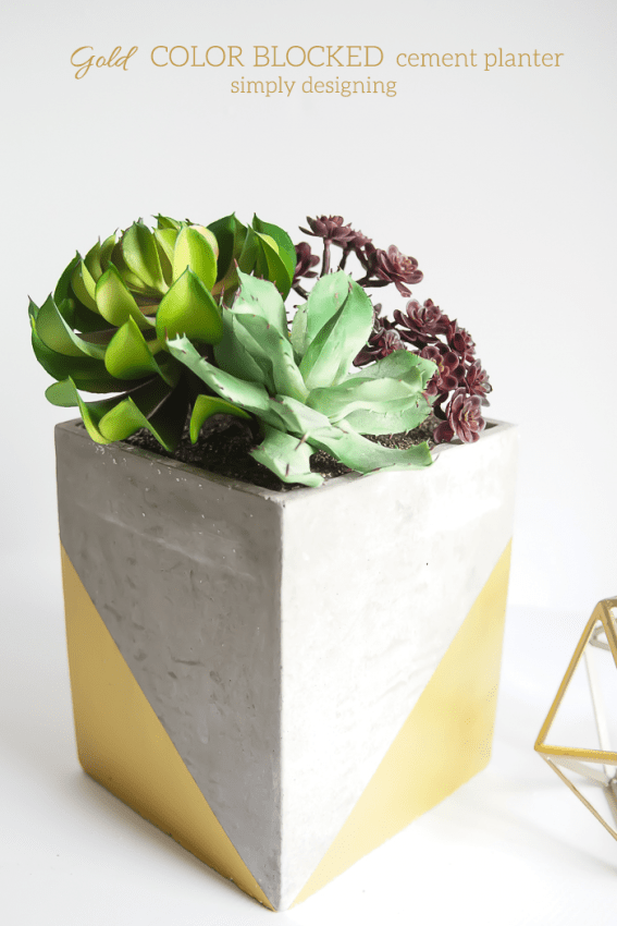 Gold Color Blocked Cement Planter - I love how the gold accent turns a rustic planter into something really beautiful